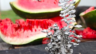 Molten Aluminum In a Watermelon