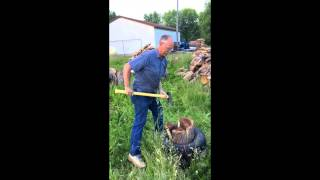 Brad's Wood Chopping Tutorial