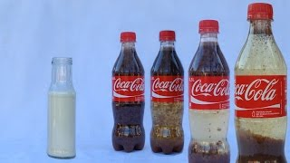 What Happens When You Mix Coca Cola and Milk?