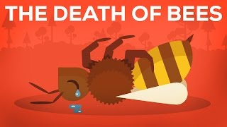 The Death Of Bees Explained